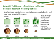 Slide22.PNG lesson5 180x130 - Herbicide-resistant Weeds Training Lessons