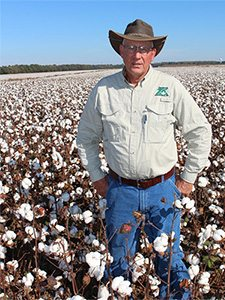 Stan Winslow Cotton Consultant - Year-Round Expert Advice to Cotton Growers